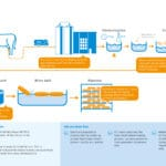 Download Infographic How is cheese made?