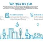 Infographic Van gras tot glas