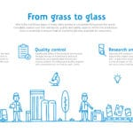 Infographic From grass to glass