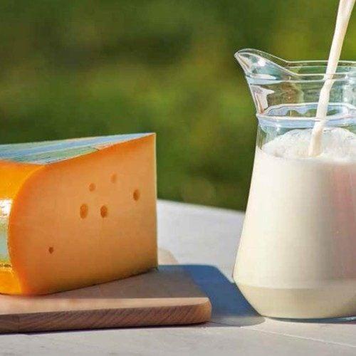 Les nutriments dans le fromage