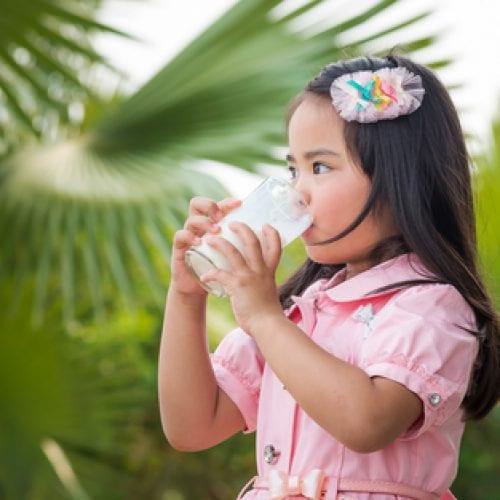 最新综述概述牛奶蛋白过敏预防和管理的机会
