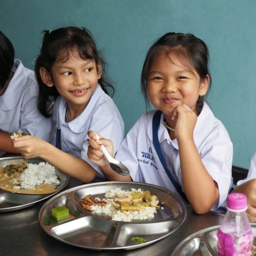Nutritional status of children aged 0.5 to 12 years in Indonesia, Malaysia, Thailand and Vietnam: South East Asia Nutrition Survey (SEANUTS) results