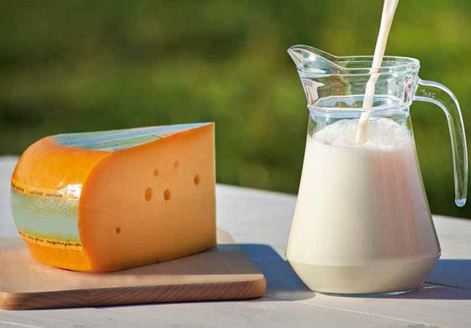Voedingsstoffen in kaas