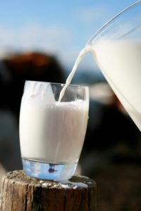 Is a calcium supplement a good alternative to drinking milk? 1